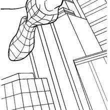 spiderman au milieu des immeubles nzkod spider man coloring pages 37 free superheroes coloring sheets on spider man images coloring pages
