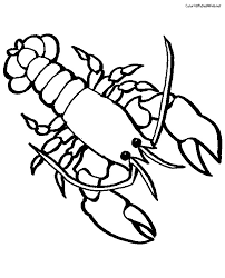 Small Picture Lobster Coloring Pages Coloring Pages For Kids Clip Art Library