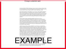essays customer care homework academic service essays customer care college paper writing software customer care services essay research paper about education