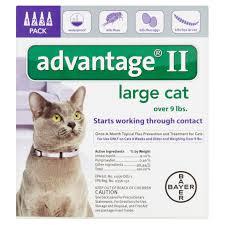 Advantage Dosage Chart For Cats Pregnant Pregnant