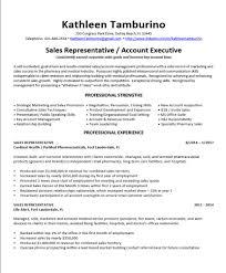 Resume Writing Resumes By Kat