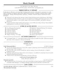Resume Sample Finance Executive Affordable Price