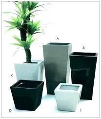 Captivating Posh Indoor Pots For Plants Indoor Plant Pots Planters Inspiring Indoor  Ceramic Planters Indoor In Indoor