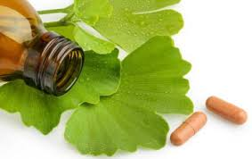 What is Gingko Biloba Food Supplement Good for?