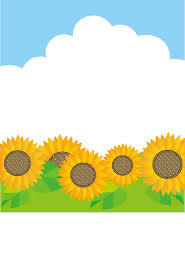 夏の画像 原寸画像検索