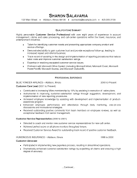 Customer Service Summary For Resume Objective Template Online