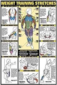 Gym Workout Chart Full Hd Images Anotherhackedlife Com