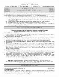 It Resume Entry Level It Entry Level Under Fontanacountryinn Com