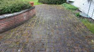 brick paver restoration and patio