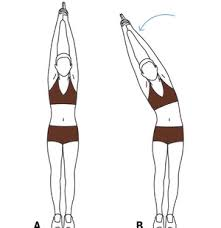 Back Workout Chart Step By Step 6 Full Body Stretching Exercises