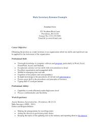 Resume For School Secretary Position Resume For Your Job Application