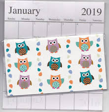 two year calender 1 2018 2019 colorful owl 2 two year planner monthly pocket