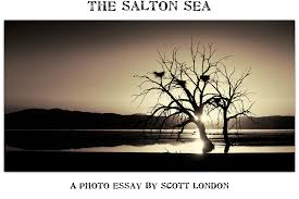 the salton sea a photo essay by scott london the salton sea a photo essay by scott london