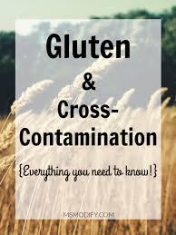 Gluten \u0026 Cross-Contamination - MsModify