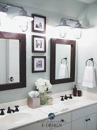sherwin williams sea salt in a bathroom with white countertop vanity farmhouse bulbs