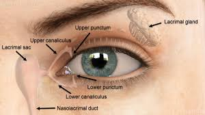 dry eyes louisville tear duct