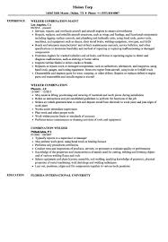 Welder Resume Templates Free Awesome Welding Resume Examples