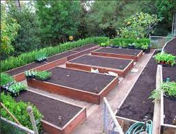 free vegetable garden layout plans and