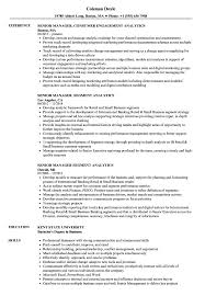 Analytics Manager Senior Analytics Manager Resume Samples