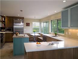 Mid Century Modern Kitchen Cabinets Design All Modern Home Designs - Mid century modern kitchens