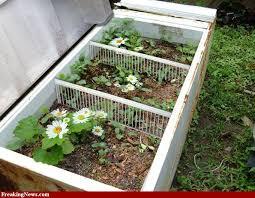 the used refrigerator planter box