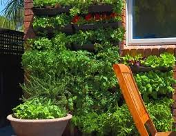 Small Picture 69 best Vertical Garden Ideas images on Pinterest Vertical