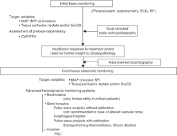 Hemodynamic Monitoring In The Critically Patient Recommendations Of