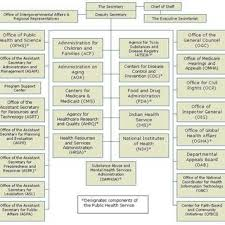 Organizational Structure Department Of Health And Human