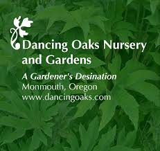 dancing oaks nursery and gardens a gardener s destination monmouth