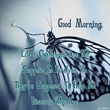 Morning Life Quotes Fresh Good Morning Quotes In English Good Morning Quotes 98