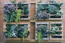 21 vertical garden ideas diy looks