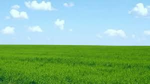 green grass blue sky. Modren Green Published February 22 2015 At 400  224 In  Throughout Green Grass Blue Sky