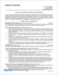 Resume Objective Sales Associate Beauteous Sales Associate Resume Examples Elegant Sales Associate Resume