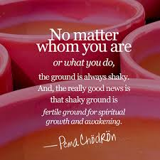 Pema Chodron Quotes Best Pema Chodron Quotes For Uncertain Times