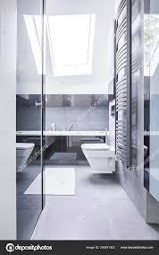 Schwarz Weiß Badezimmer Interieur Mit Reflektierenden Fliesen