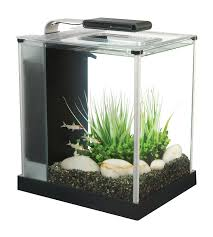 office desk aquarium. Office Desk Aquarium \u2013 Space Saving Ideas T