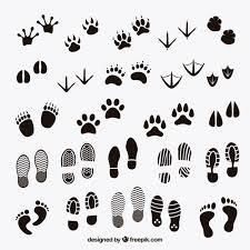 足 に関するベクター画像写真素材psdファイル 無料ダウンロード