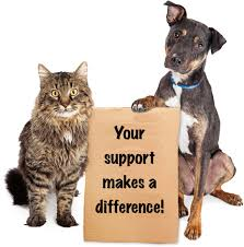 animal shelter donate. Perfect Donate Donate To Mending Hearts Animal Rescue  Your Support Makes A Difference Throughout Shelter D