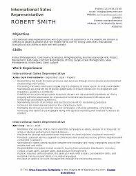 International Resume Sample International Sales Representative