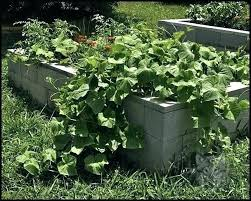 concrete raised garden beds concrete block raised garden bed concrete block raised garden bed concrete block