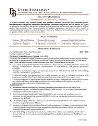 executive c level executive resume example example of executive resume