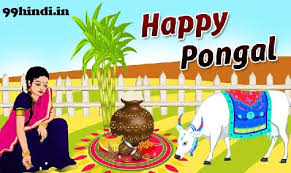 essay on pongal festival in hindi agrave curren ordf agrave yen agrave curren agrave curren agrave curren sup agrave curren curren agrave yen agrave curren macr agrave yen agrave curren sup agrave curren frac agrave curren deg agrave curren ordf agrave curren deg  short essay on pongal festival in hindi