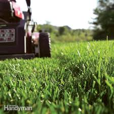 get a greener healthier lawn with less work