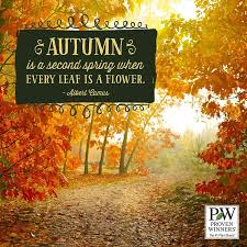 Beautiful Autumn Quotes Best of Beautiful Autumn Pictures Quotes And Sayings 24 The Best