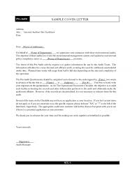 Example Auditor Resume Free Sample Internal Promotion How To Write A