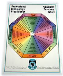 Kinesiology Emotion Chart Aec5521 Amygdala Emotions Chart Kinesiology Learning