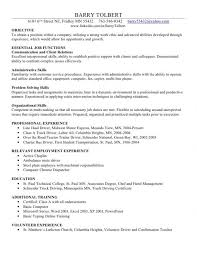 Basic Computer Skills Resume New Information Technology It Sample