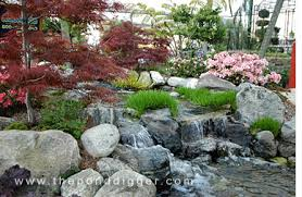 Small Picture Pond Design Consultation Construction and Services The Pond Digger