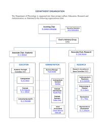 Cag Organisation Chart Physiology Organizational Chart