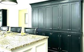 replacement hinges for kitchen cabinets replacing hinges on kitchen cabinet doors inspirational awesome